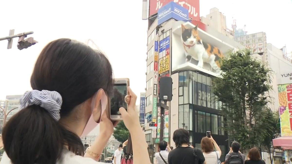 Giant 'Catzilla' attraction takes over downtown Tokyo   IOI Newz